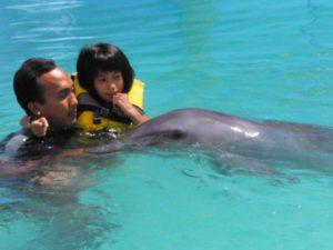 pływanie z delfinami Bali