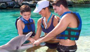 pływanie z delfinami w Meksyku - Cancun