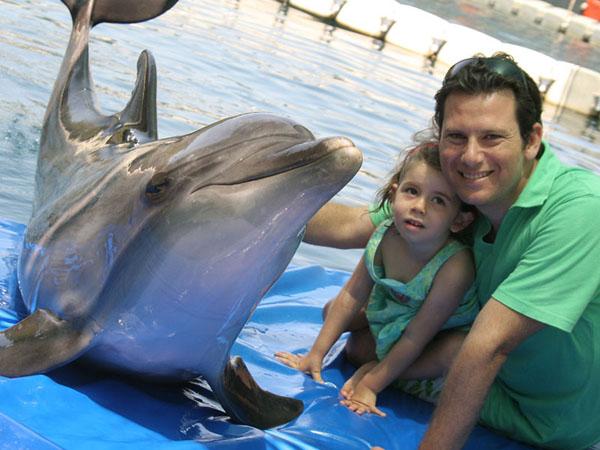 Pływanie z delfinami Turcja - Marmaris - Icmeler