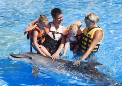 delfinoterapia Turcja
